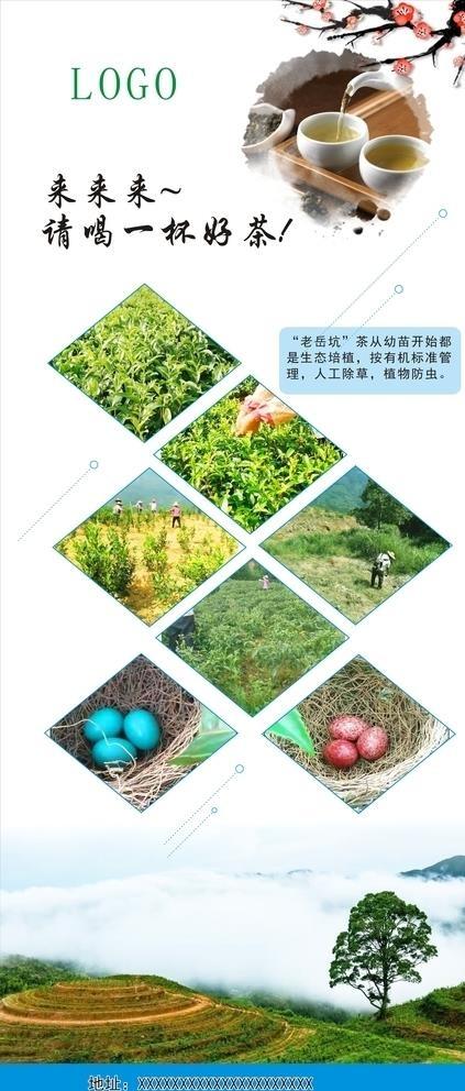生态观光农业茶园展架图片展架cdr矢量模版下载